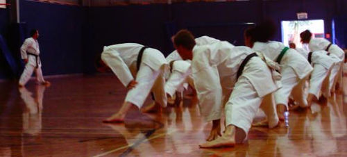 Exercise Time at Karate Dojo